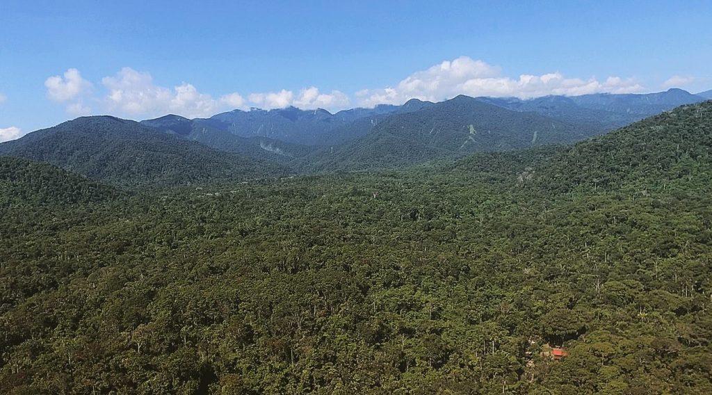 Parque Nacional del Manu - Sernanp.